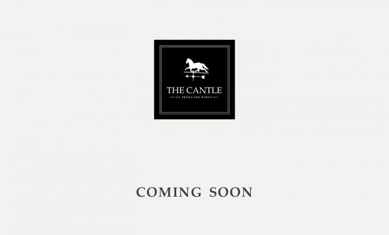 The Cantle